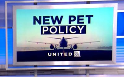 United Airlines and Pets 2018