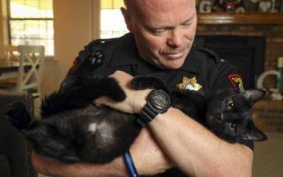 PetSmart Reaches Milestone of 8 Million Adopted Pets