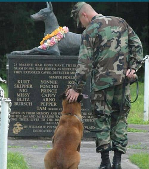 ww2_wardogs_memorial