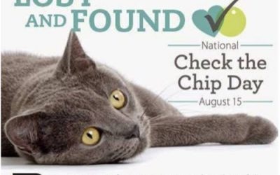 Paws-ing for Your Pets on Check the Chip Day
