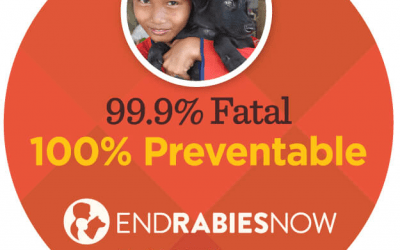 Is There a Future With No Rabies? World Rabies Day 2018