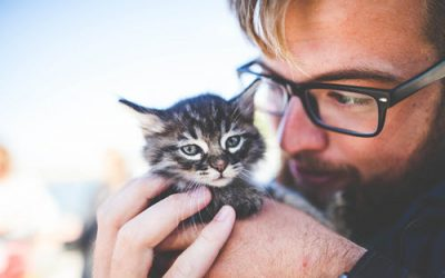 Millennials Love Their Pets – 73% Have a Pet