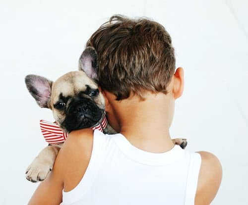 7 ways to celebrate your dog