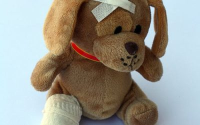 Canine First Aid Kit Essentials