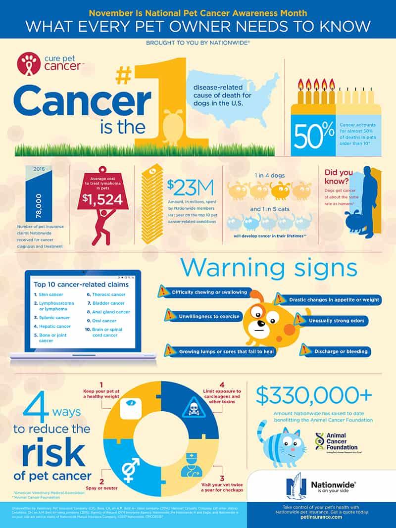 Nationwide Pet Insurance Pet Cancer Awareness Infographic
