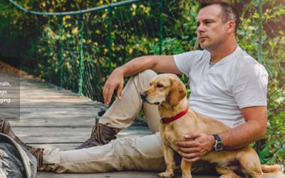 On Veterans Day – Pets for Vets with PTSD
