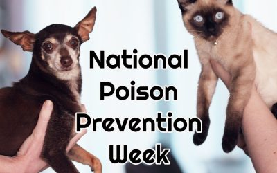 Raising Awareness During the 57th National Poison Prevention Week