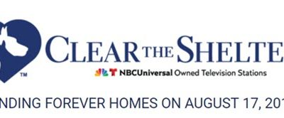 Clear the Shelters 2019 – August 17th
