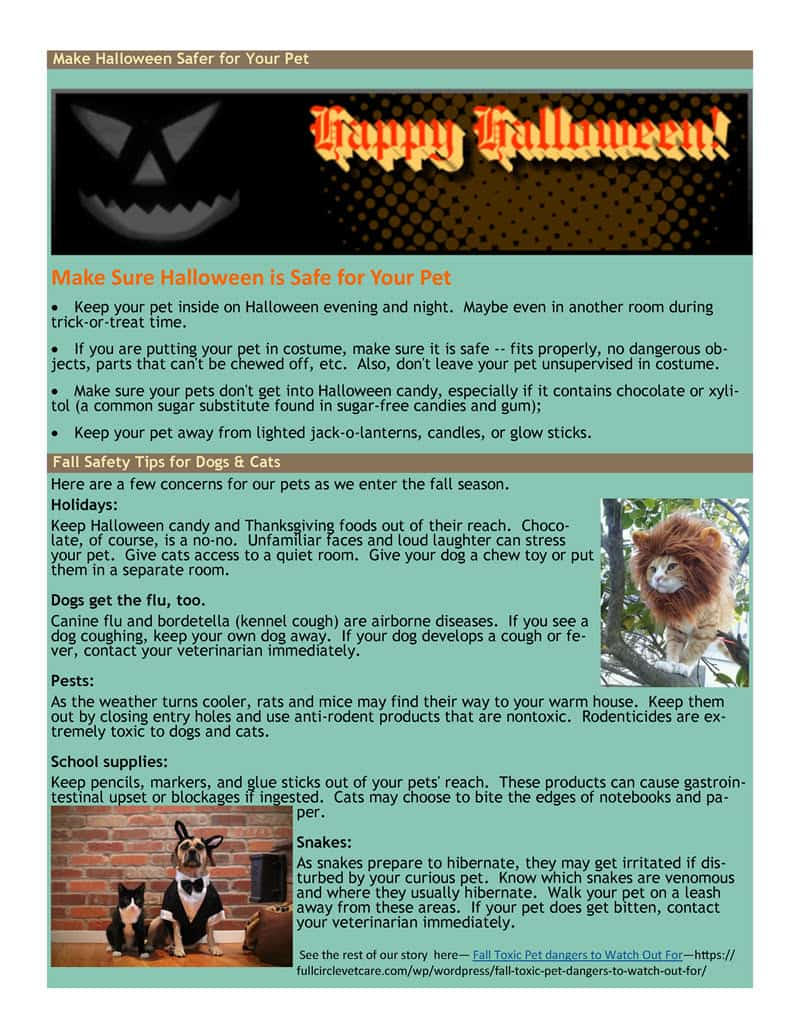 october news page 3