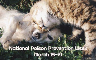 Raising Awareness During National Poison Prevention Week