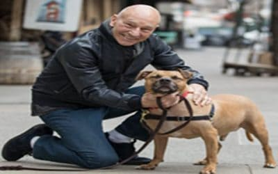 Sir Patrick Stewart Teams Up Against Dog Fighting