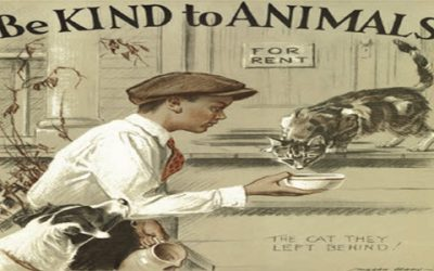 Animals First During Be Kind to Animals Week