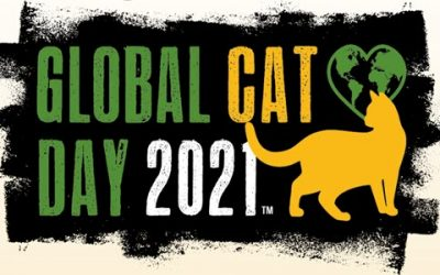 National Feral Cat Day aka Global Cat Day