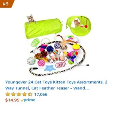 best cat toy 2 way tunnel
